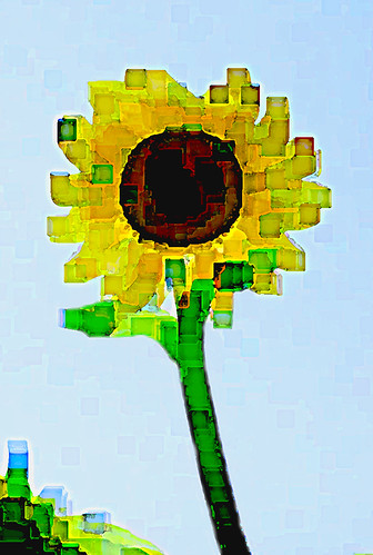 Cubist Sunflower 4
