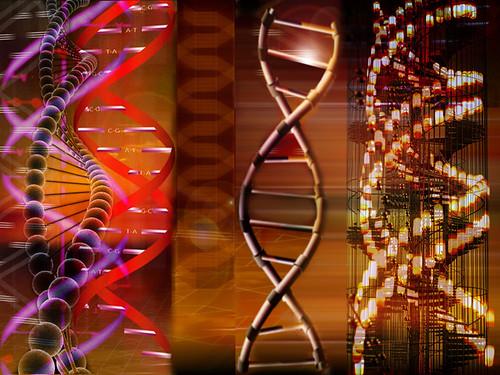 ADN de emprendedor social