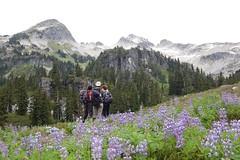 Tricouni Peak 198