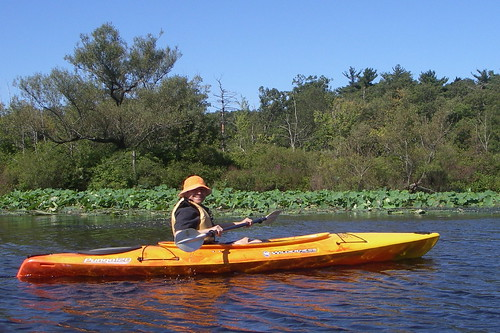 RT in Kayak