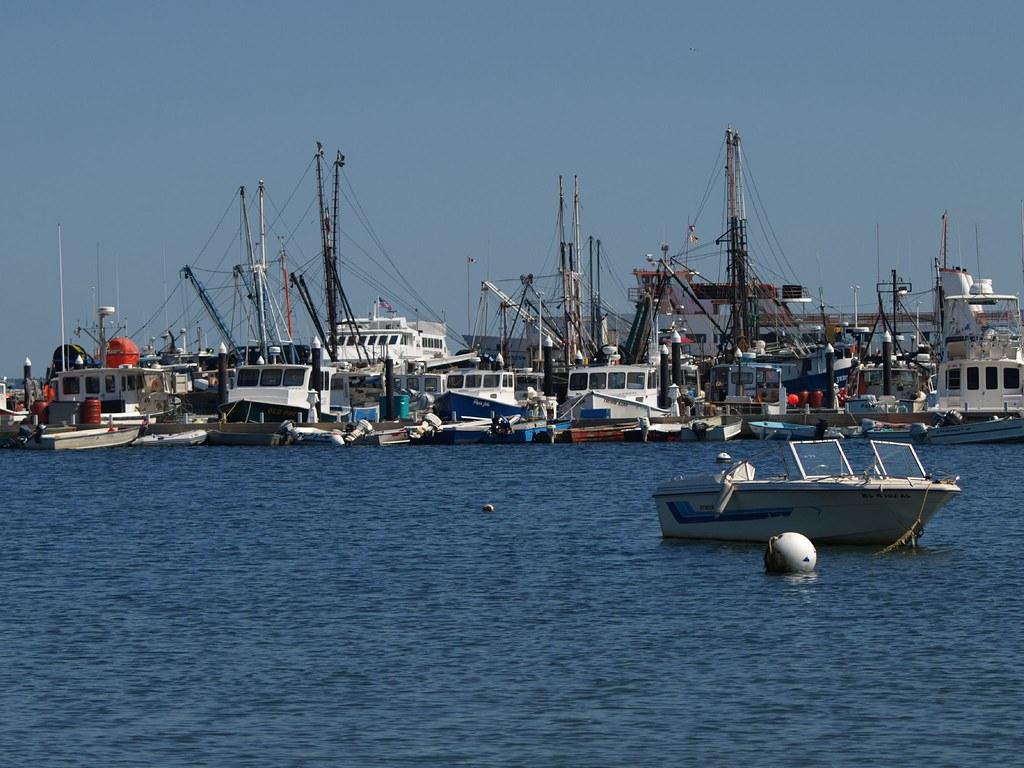 Provincetown Harbor 3