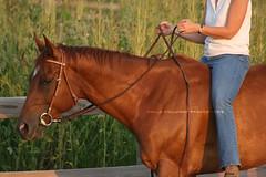2008 Aug 31 023 (Mellinger Photography) Tags: horse me bareback photography riding jag scotch equine rode megafleet