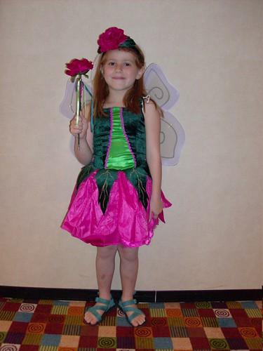 019 Rose Fairy