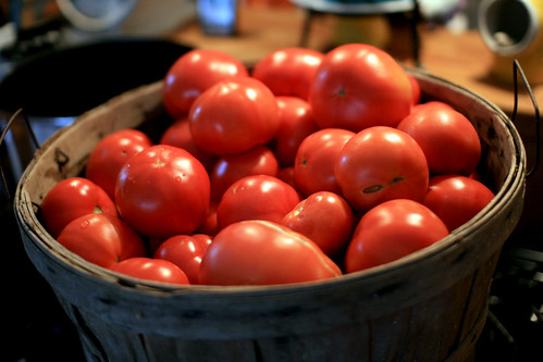 basket of incoming tomatoes