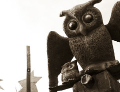 Owled
