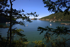 Beautiful North West (SusanCK) Tags: tree water boats bay mountainview susancksphoto deceptionpassoverview