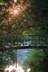 Vondelpark bridge (KennethVerburg.nl) Tags: park bridge autumn sunset tree water amsterdam herfst nederland boom september brug 2008 vondelpark canoneos5d