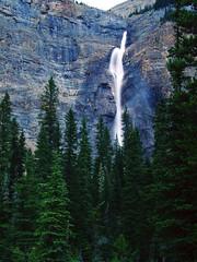 Magnificent (BoscoMtn) Tags: nationalpark britishcolumbia magnificent yoho canadianrockies takakkawfalls yohovalley