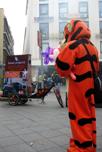 tigre divertidos