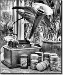 MUSIC in the CONSERVATORY (mickeydud) Tags: blackandwhite stilllife history monochrome blackwhite antique shiningstar blackdiamond antiquity musictomyeyes doubledragon goldenglobe blueribbonwinner kartpostal challengeyouwinner 15challengeswinner diamondstars anticando chosenchallengers spiritofphotography thechallengefactory vanagram vanagrammofon ysplixblack alwaysexc mickeydud dragondaggerphoto storybookwinner