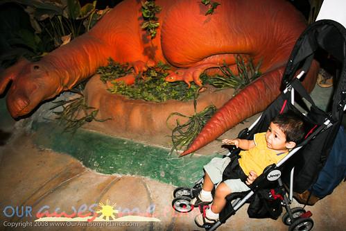 Dino's Alive-9