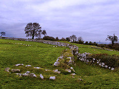Nendrum Walls (Etrusia UK) Tags: uk tree clouds nikon ruins rocks zoom unitedkingdom wideangle medieval monastery northernireland stonewall ni pictureperfect ulster d300 strangfordlough nikkorlens codown monasticsite 6thcentury 18200mm nendrum nikonlens vrlens celticchurch nikon18200mm 5thcentury nikkor18200mm miserableweather 7thcentury nendrummonasticsite nikond300