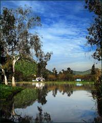 Reflejos en la laguna (Errlucho) Tags: