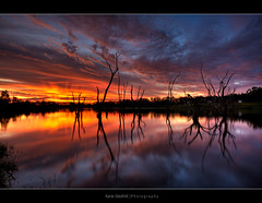 Run to the Water ([ Kane ]) Tags: sunset sun lake tree water canon reflections dusk live australia brisbane explore qld queensland kane hdr gledhill 400d aplusphoto kanegledhill vosplusbellesphotos wwwhumanhabitscomau kanegledhillphotography
