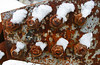 Crust and Snow (The Joy Of The Mundane) Tags: macro texture closeup peeling nuts rusty flake textures rusted bolt oxidation bolts rusting nut peel flaking oxidize corrosion textured corroded oxidized corroding