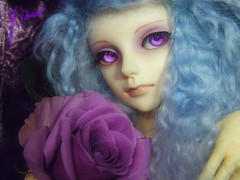 Byaku-en (borometz) Tags: color art rose doll purple vampire gothic fantasy bjd    custom 13 bluebayou  bluerose balljointdoll   60cm mohairwig dollzone  byakuen