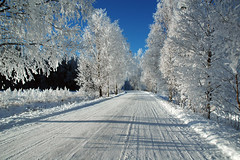 090202 #1 (Jari) Tags: road winter white snow suomi finland d70 february 2009 lieto winterroad nautelankoski nautela