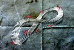 Infinitum (juli_modul) Tags: barcelona sony catalonia ants catalunya escher infinite moebius infinitum formigues mbius dscr1 mywinners abigfave