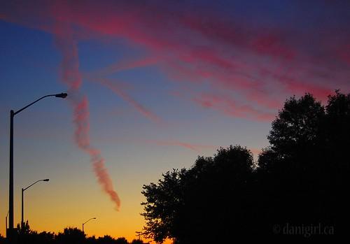 238:365 Sunrise in primary colours