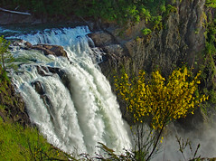 Top of Snoqualmie Falls (Graham Gibson) Tags: seattle snoqualmiefalls 2009