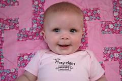 Hayden February 2008