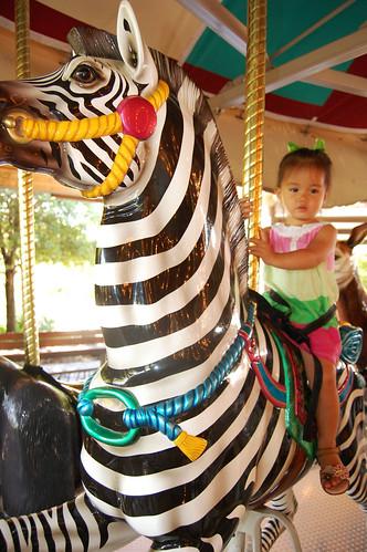 carousel4.jpg