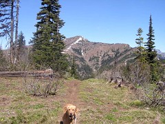 Gusto with Miller behind (ridge we will run on the way down to the right)