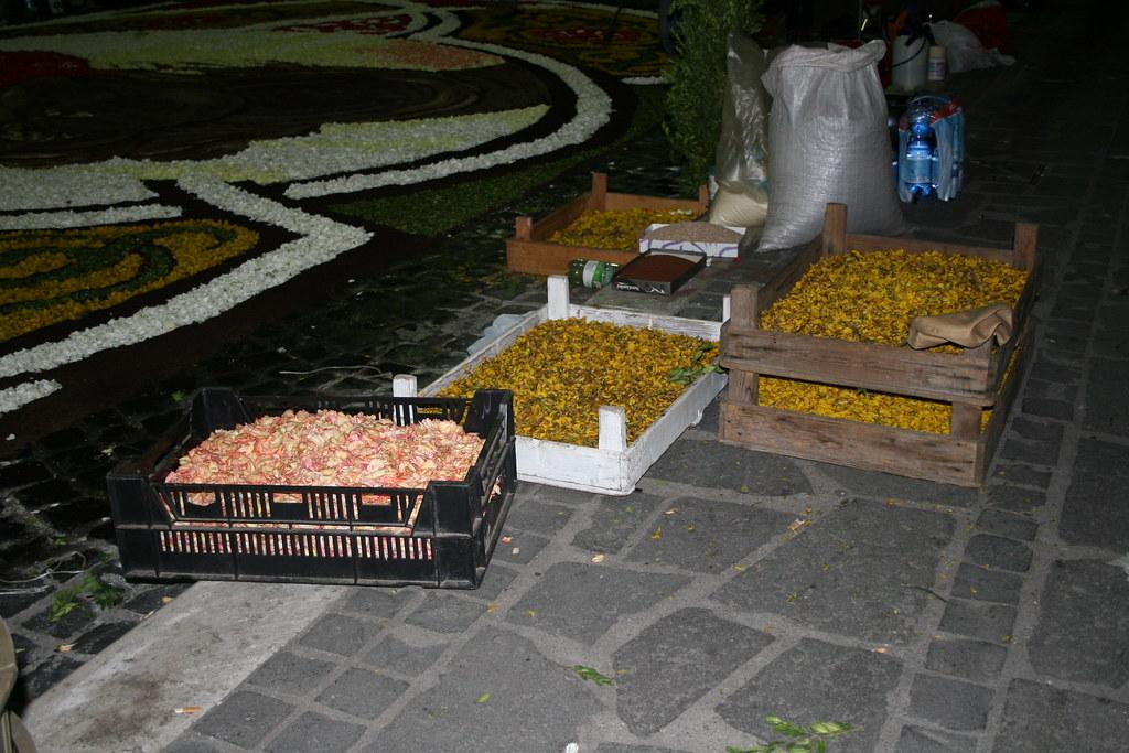 2580303006 c607b2e82a b Infiorata – the Italian flower festival in Genzano [35 Pics]