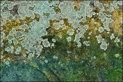 sea fauxm (vcrimson) Tags: nottingham blue sea england abstract colour green texture yellow concrete decay grunge foam lichen