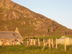 Birds (jauntyjinty) Tags: birds fence islands scotland hill croft barra westernisles cleat hebrides outerhebrides