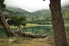 Etang du Laurenti (fabdebaz) Tags: montagne eau lac nuage paysage aficionados ariège pentaxk10d francelandscapes justpentax aout2008 vosplusbellesphotos