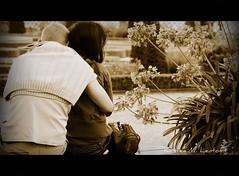 Love blossoms (Kirsten M Lentoft) Tags: park people woman man flower sepia garden candid humans firstquality fpg mywinners anawesomeshot momse2600 sleepwellmydear betterthangood theperfectphotographer mmmuahhh goodnighthugdearkirsten kirstenmlentoft