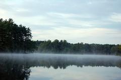 fog2.jpg