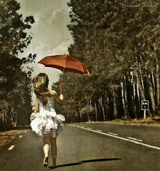 Take me back to the Start (Nika Fadul) Tags: road trees red white texture