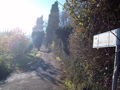 via madonetta (Galzignano Terme, Veneto, Italy) Photo
