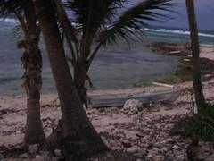 cayman_dec08 166 (goatling) Tags: beach island evening windy east tropical tropic caribbean cayman carib caymanislands tropics grandcayman caribe westindies ontheedge britishwestindies