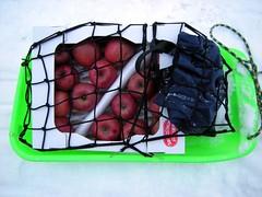 shopping sled