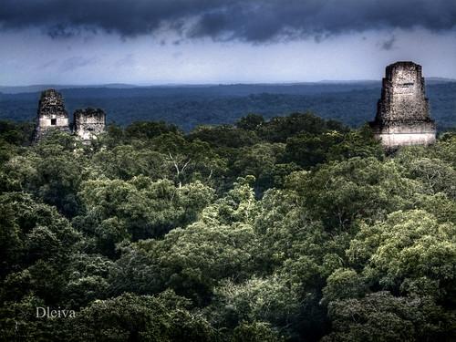 el Tikal Guatemala Tikal Petén / Guatemala