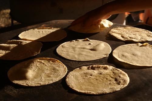 ¿Quien invento la tortilladora mecanica?