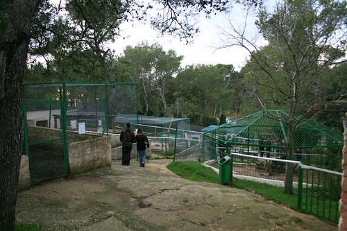 Zoo_du_Mont_Faron_18
