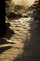 As I walked out one midwinter morning (wycombiensian) Tags: winter snow newmexico santafe sunrise unitedstates path january