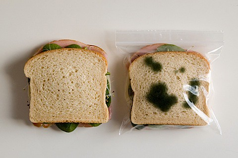lunch_bag_5.jpg