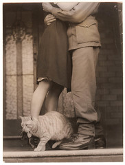 Soldier's goodbye & Bobbie the cat, ca. 1939-ca. 1945 / by Sam Hood (State Library of New South Wales collection) Tags: digger love cats uniforms goodbye soldier pussy boots embrace farewell hug console bottom leaving pocket deployment sad crying tears kiss feline tabby sepia photo photograph war togetherness couple romance man woman cuddle statelibraryofnewsouthwales highheels cross dress slip bobbiethecat thecatwhoturnedonandoff epic galletas cute littledoglaughednoiretblancet gato pareja pies amor