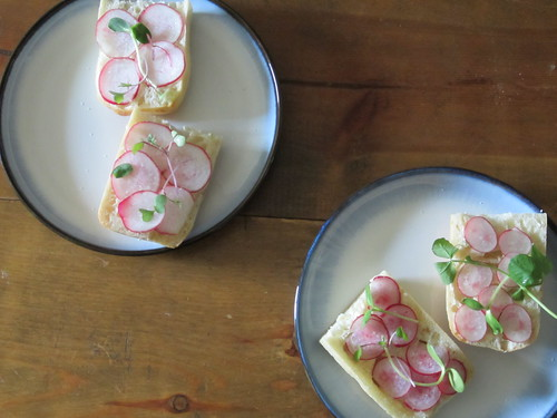 buttered bread with salted radishes