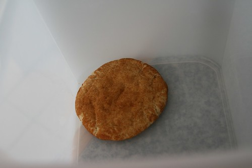 the last snickerdoodle
