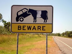 Beware of the Cow (tm-tm) Tags: car sign warning cow australia signage queensland oceania