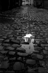 reflexion • dijon, burgundy • 2008 (lem's) Tags: street dijon burgundy reflet rue bourgogne reflexion canonet paved pavés artlegacy artinbw bwartaward