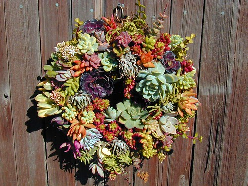 living wreath 2