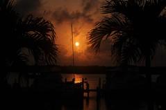 Dearest Love, Wishing you were here.. (M'sheArt2 Photography) Tags: trees music black love marina sunrise reflections boats early mac nikon poetry silhouettes palm poweroutage  alchemy burntorange d300 ❤ quietude platinumheartaward ms❤2 may202008 ✍ msdsc6720 sunrisecaptivathecloudsasintenseasyesterdaymarina 060330am backonandtimeforcoffeeandsunrise •newheartawards msheart~ooo~graphy msheart~o❍o~graphy poemsandquotes