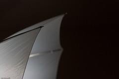 One of my light shaping tool (Luc Deveault) Tags: white canada umbrella gris dof quebec bokeh gray champs qubec luc blanc opus pdc parapluie profondeur strobist deveault lucdeveault